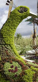 RHS Hampton Court Palace Flower Show 2018