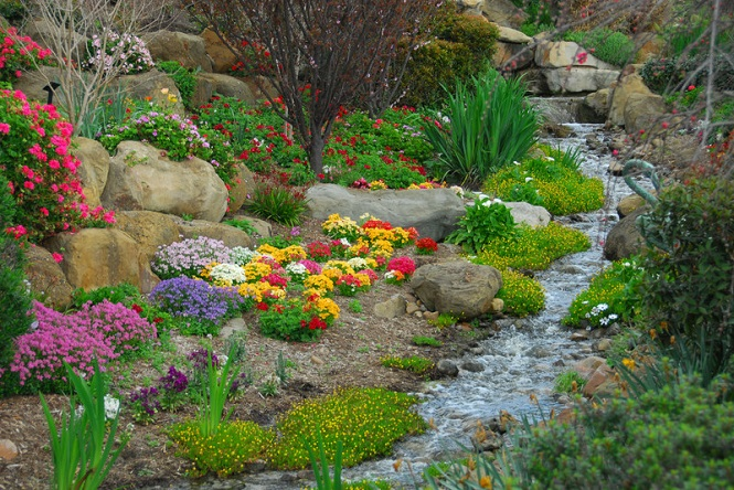 A rock garden, complete with running stream and flowering plants