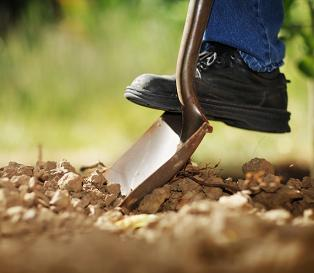 Garden soil (Photo: © Can Stock Photo Inc. / logoboom)