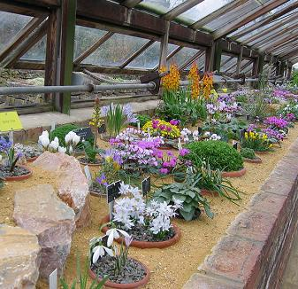 Alpine House