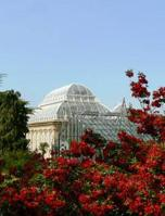 Edinburgh Royal Botanic Garden
